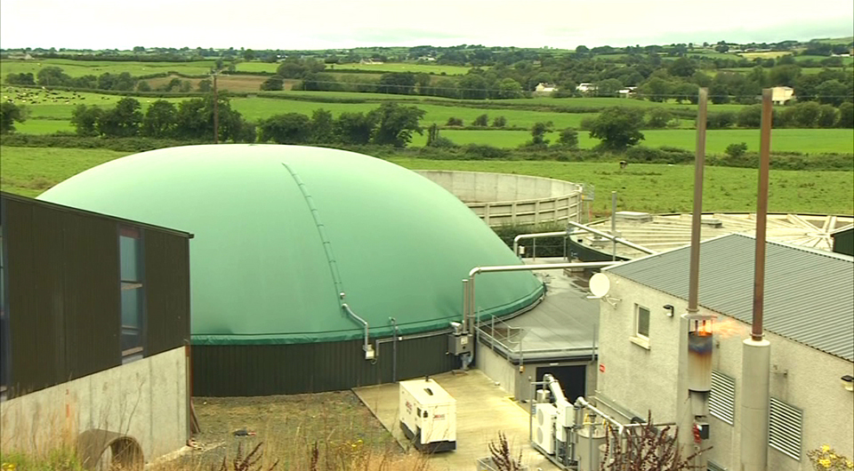 Invest Northern Ireland - Bio Energy